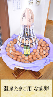 温泉たまご用なま卵