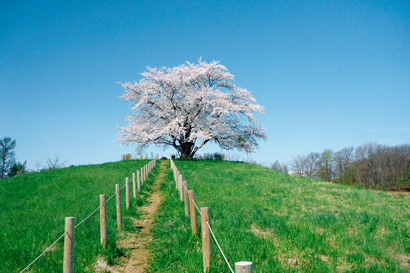 松川温泉 松川荘 温泉イメージ